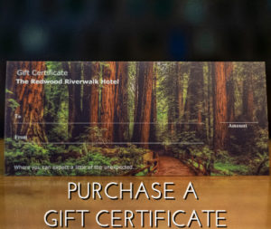 Putchase a Gift Certificate Link