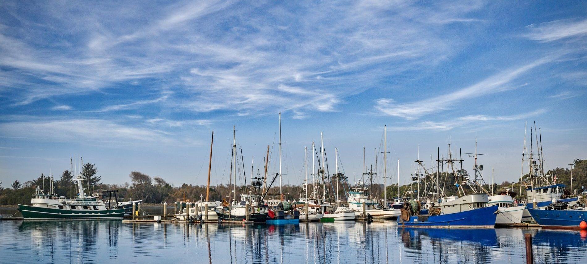 Boats in a harbor in Eureka CA