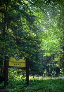 Two bike riders in California Redwood forest with yellow sign- Humboldt Redwoods State Park