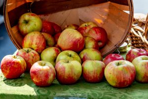 pile of red apples with green striping spilling out of brown wood basket on table