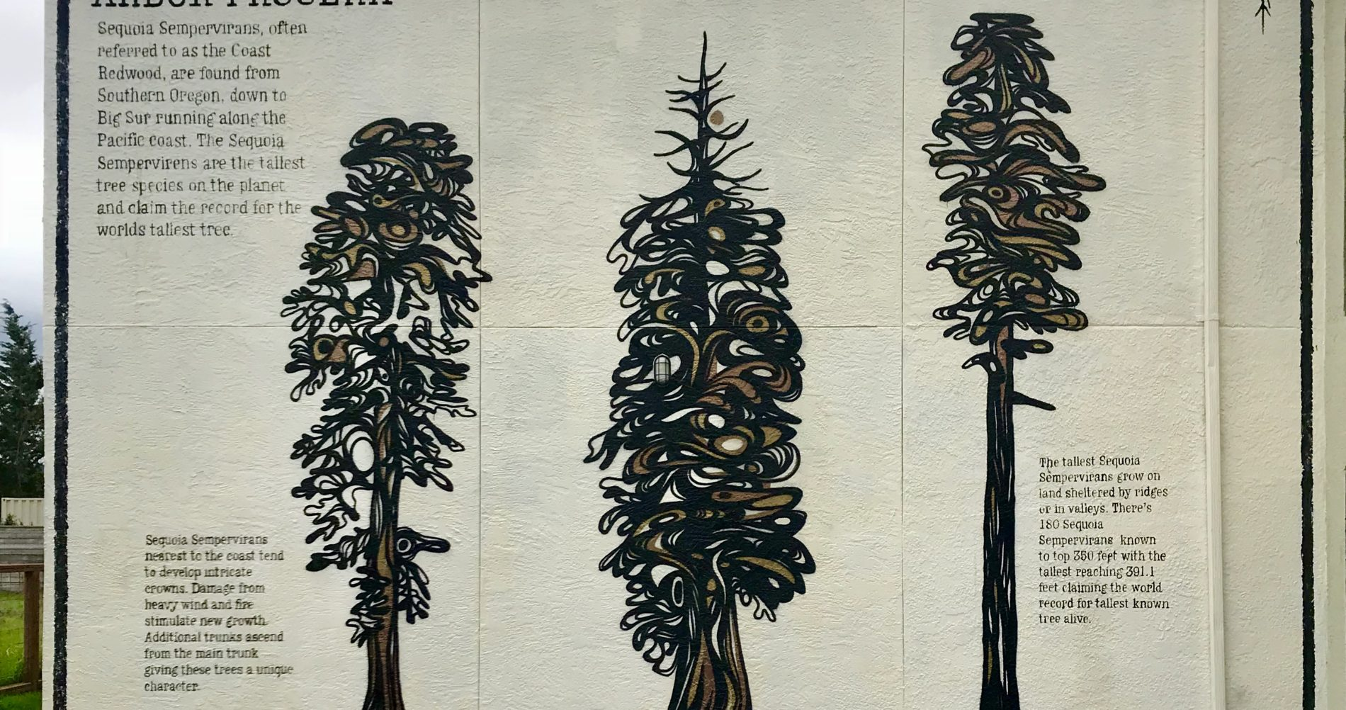 mural of trees on the south side of The Redwood Hotel