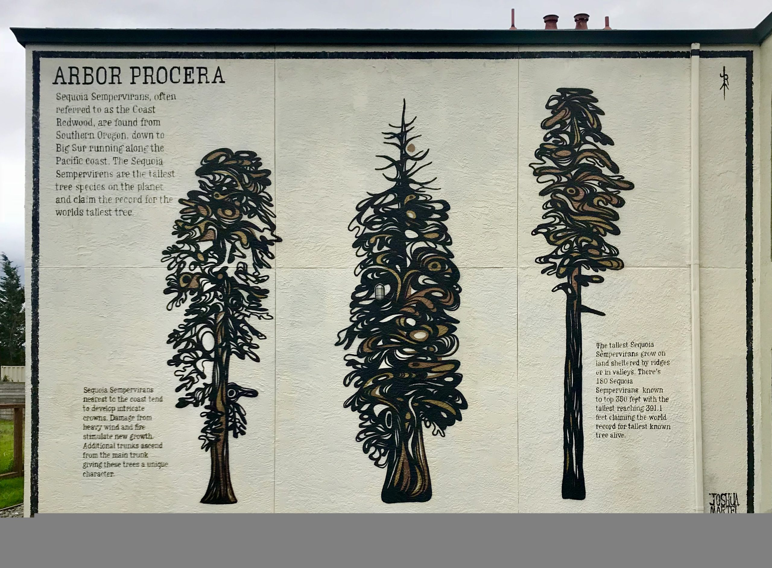 Mural of trees by Joshua Martel