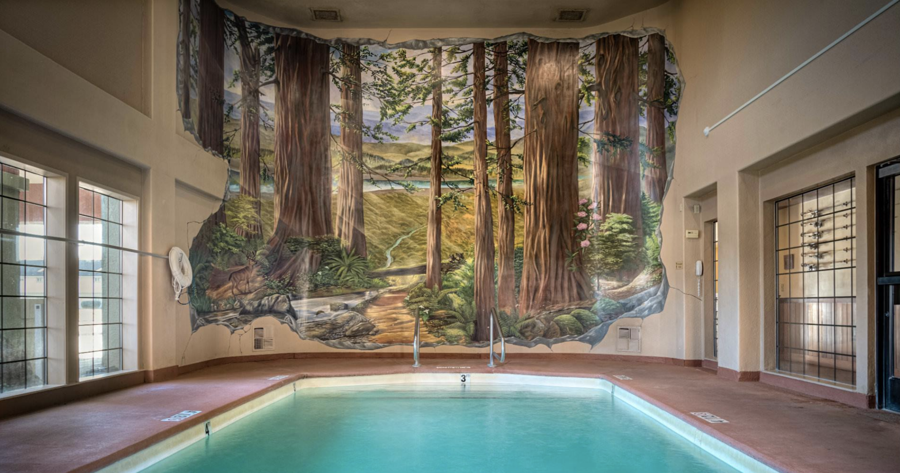 Beautiful mural in the pool area of redwoods