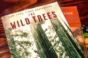 """closeup of two books on wooden table - """"The Wild Trees"""" cover shows tall green and brown redwoods on white background"""